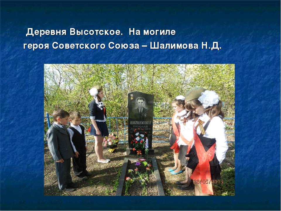 Деревня Высотское. На могиле героя Советского Союза – Шалимова Н.Д.