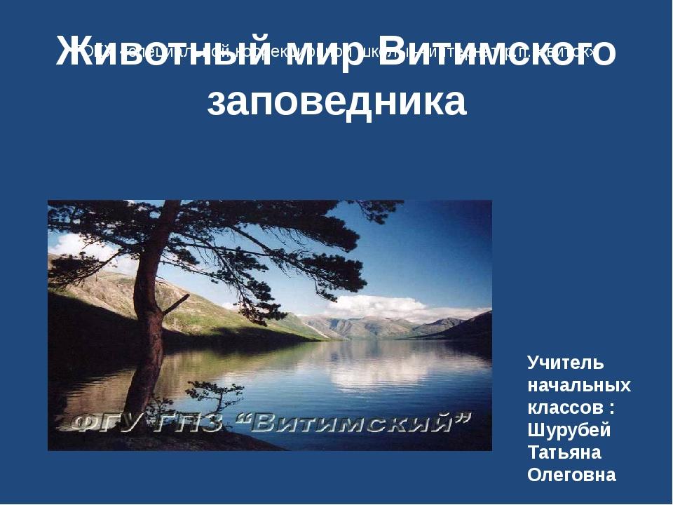 Животный мир Витимского заповедника Учитель начальных классов : Шурубей Татья...