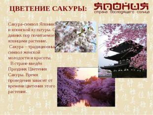 ЦВЕТЕНИЕ САКУРЫ: Сакура-символ Японии и японской культуры. С давних пор почит