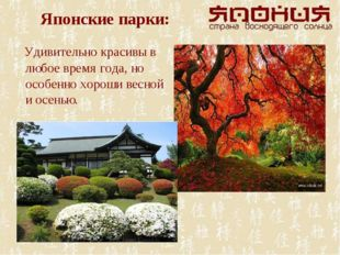 Японские парки: Удивительно красивы в любое время года, но особенно хороши ве