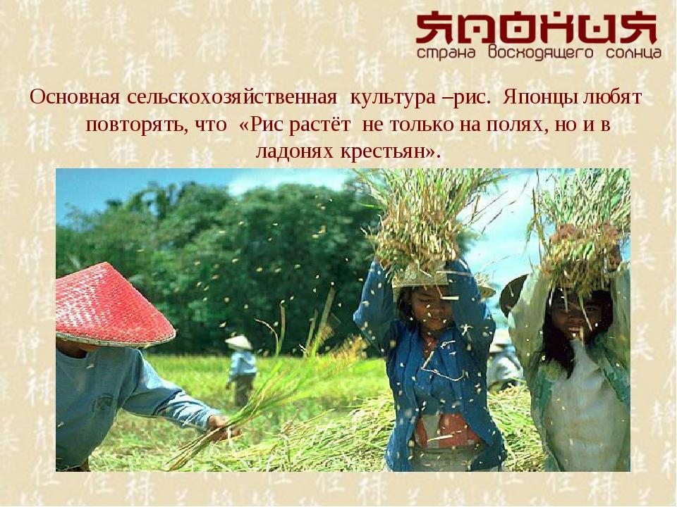 Основная сельскохозяйственная культура –рис. Японцы любят повторять, что «Рис...