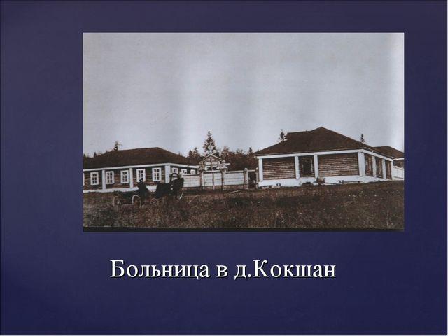 Больница в д.Кокшан