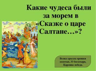 Какие чудеса были за морем в «Сказке о царе Салтане…»? Белка грызла орешки зо