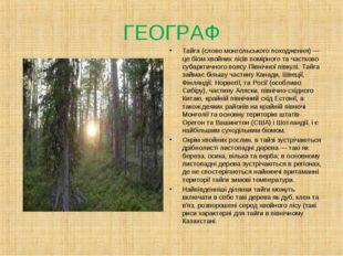 ГЕОГРАФ Тайга (слово монгольського походження) — це біом хвойних лісів помірн