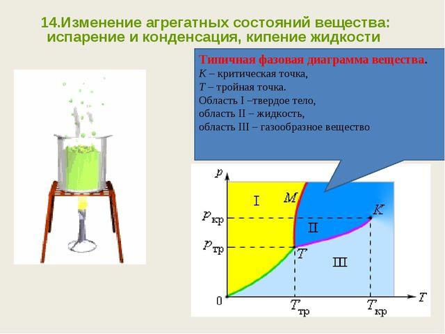 14.Изменение агрегатных состояний вещества: испарение и конденсация, кипение...
