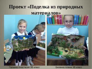 Проект «Поделка из природных материалов» Галкина Анастасия 3В класс Биленко А