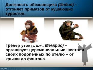 Должность обезьянщика (Индия) – отгоняет приматов от кушающих туристов. Трене
