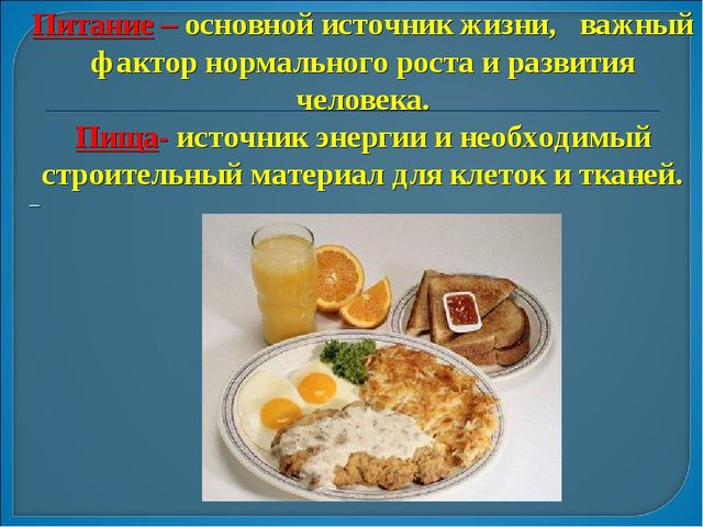 Питание – основной источник жизни, важный фактор нормального роста и развития...