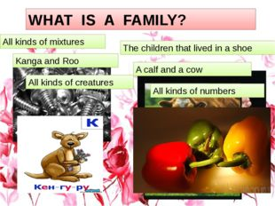 1 WHAT IS A FAMILY? All kinds of mixtures The children that lived in a shoe K