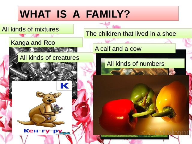 1 WHAT IS A FAMILY? All kinds of mixtures The children that lived in a shoe K...