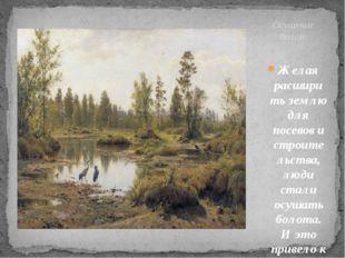 Желая расширить землю для посевов и строительства, люди стали осушать болота.