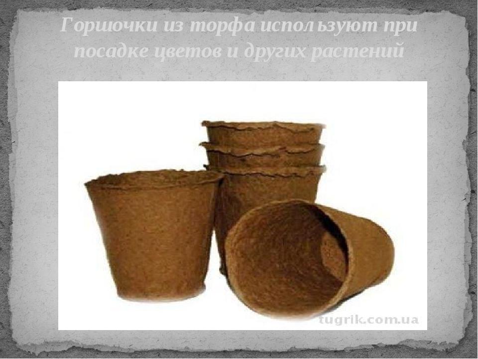 Горшочки из торфа используют при посадке цветов и других растений