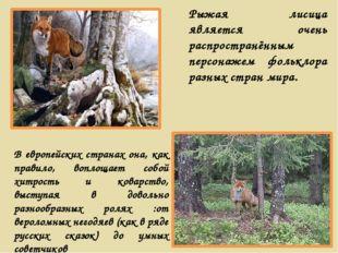Рыжая лисица является очень распространённым персонажем фольклора разных стра
