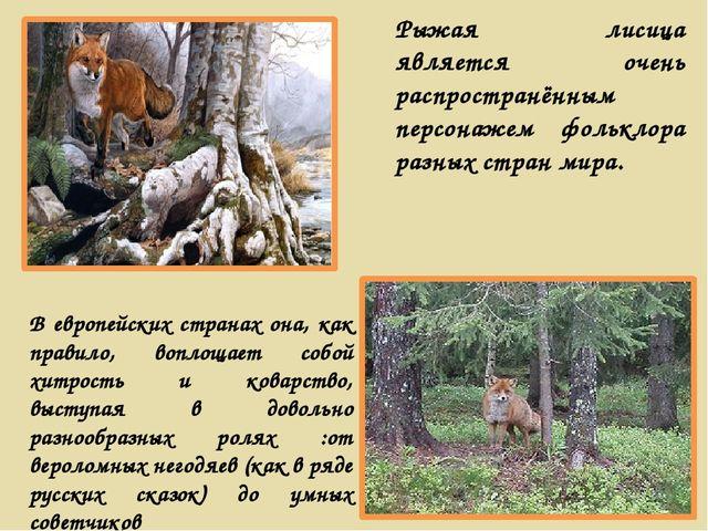 Рыжая лисица является очень распространённым персонажем фольклора разных стра...