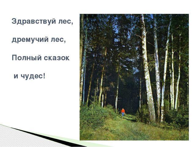 Здравствуй лес, дремучий лес, Полный сказок и чудес!
