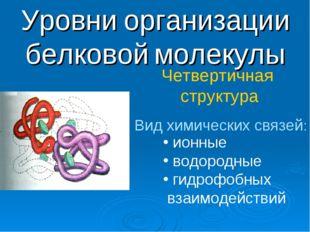 Уровни организации белковой молекулы Четвертичная структура Вид химических св