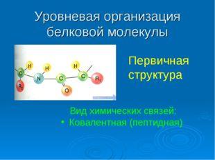 Уровневая организация белковой молекулы Первичная структура Вид химических св