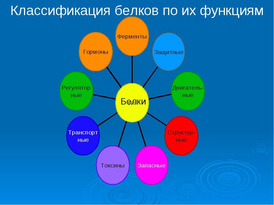 Классификация белков по их функциям Белки