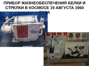 ПРИБОР ЖИЗНЕОБЕСПЕЧЕНИЯ БЕЛКИ И СТРЕЛКИ В КОСМОСЕ 19 АВГУСТА 1960 ГОДА