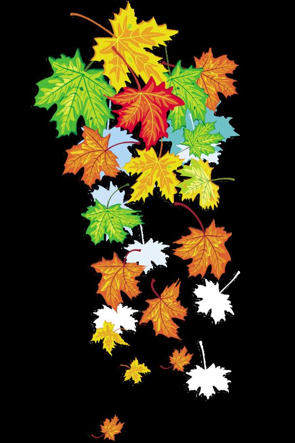 Днем жемчужной, листопад картинки для детей в детском саду