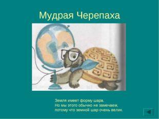Мудрая Черепаха Земля имеет форму шара. Но мы этого обычно не замечаем, потом