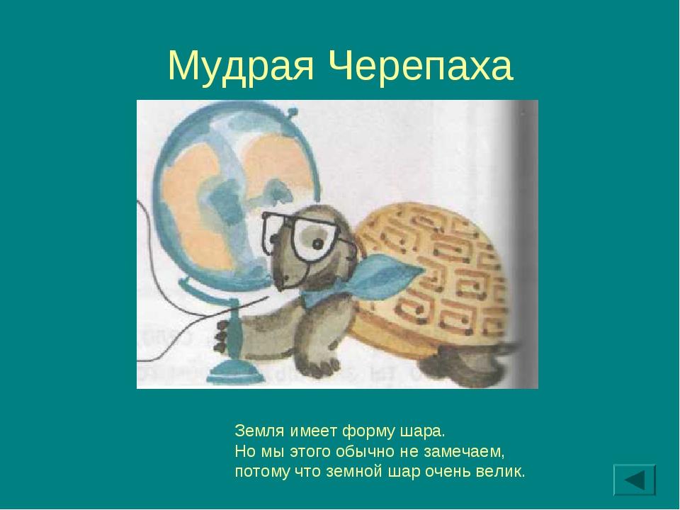 Мудрая Черепаха Земля имеет форму шара. Но мы этого обычно не замечаем, потом...