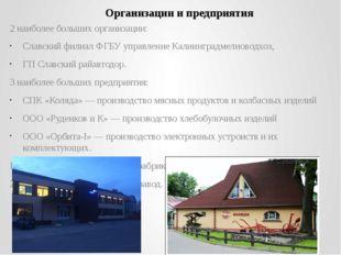 2 наиболее больших организации: Славский филиал ФГБУ управление Калиинградмел
