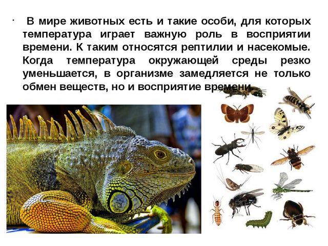 В мире животных есть и такие особи, для которых температура играет важную ро...