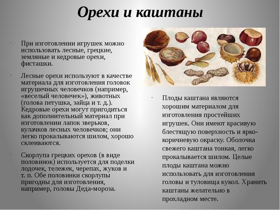 Орехи и каштаны При изготовлении игрушек можно использовать лесные, грецкие,...