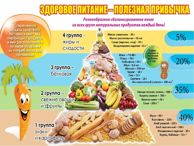 Законы и правила здорового питания
