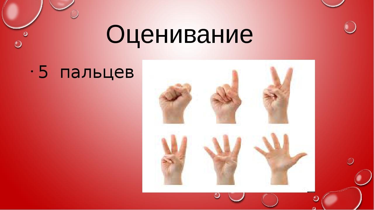 Оценивание 5 пальцев