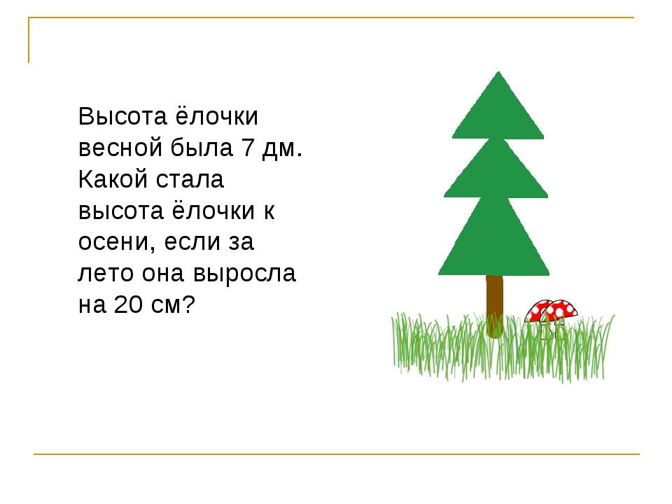 Высота ёлочки весной была 7 дм. Какой стала высота ёлочки к осени, если за ле...