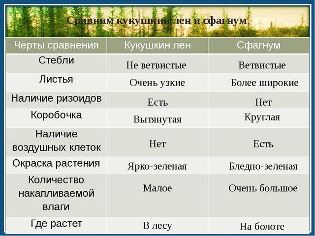Сравним кукушкин лен и сфагнум Не ветвистые Ветвистые Очень узкие Более широ...
