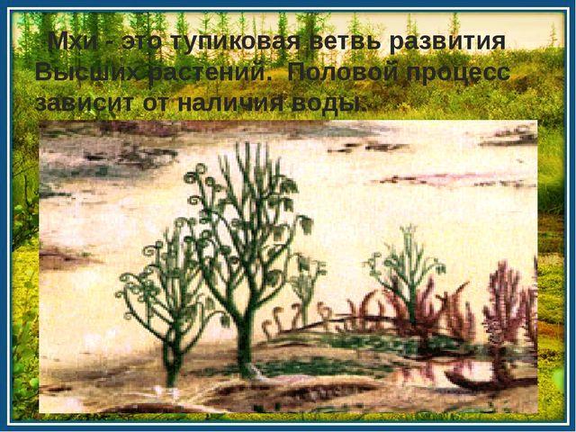 Мхи - это тупиковая ветвь развития Высших растений. Половой процесс зависит...