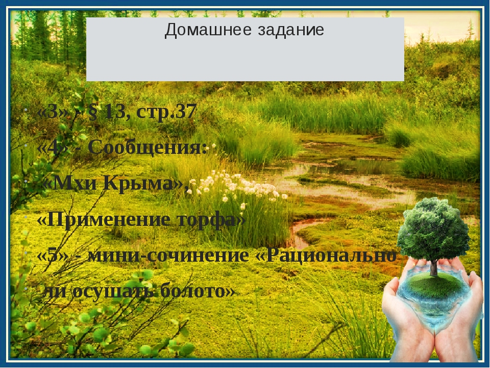 Домашнее задание «3» - § 13, стр.37 «4» - Сообщения: «Мхи Крыма», «Применение...