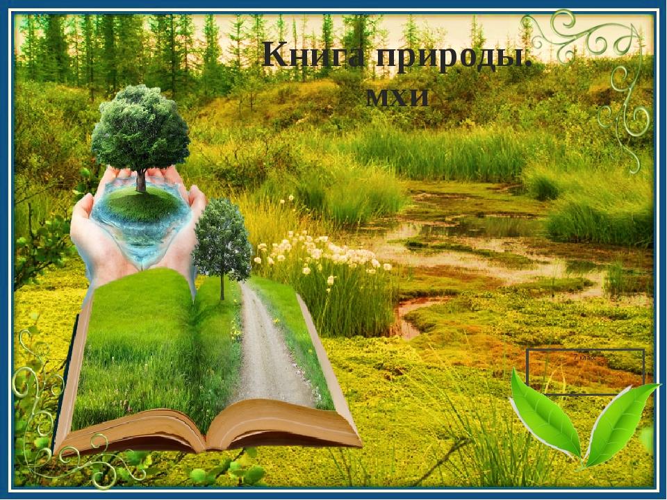 Книга природы. мхи 7 класс