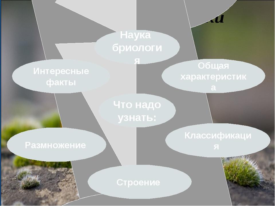 Тема исследования: Мхи Что надо узнать: Классификация Интересные факты Общая...