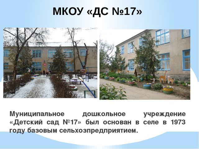 МКОУ «ДС №17» Муниципальное дошкольное учреждение «Детский сад №17» был основ...