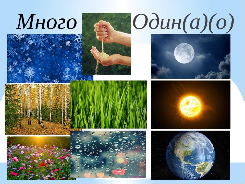 Один(а)(о) Много
