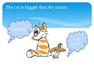 The cat is bigger than the mouse. I am big. I am small.