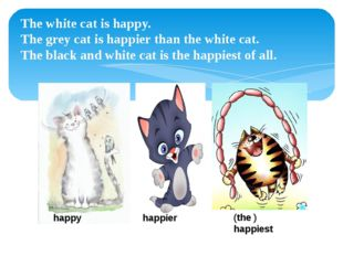 The white cat is happy. The grey cat is happier than the white cat. The black