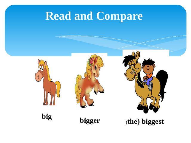 Read and Compare bigger (the) biggest big