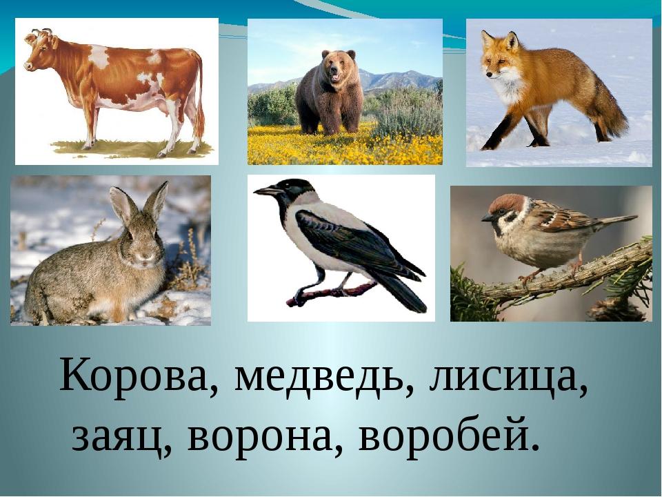 Корова, медведь, лисица, заяц, ворона, воробей.