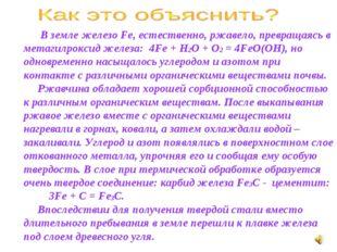 В земле железо Fe, естественно, ржавело, превращаясь в метагилроксид железа: