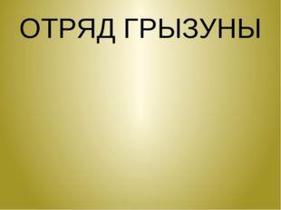 ОТРЯД ГРЫЗУНЫ