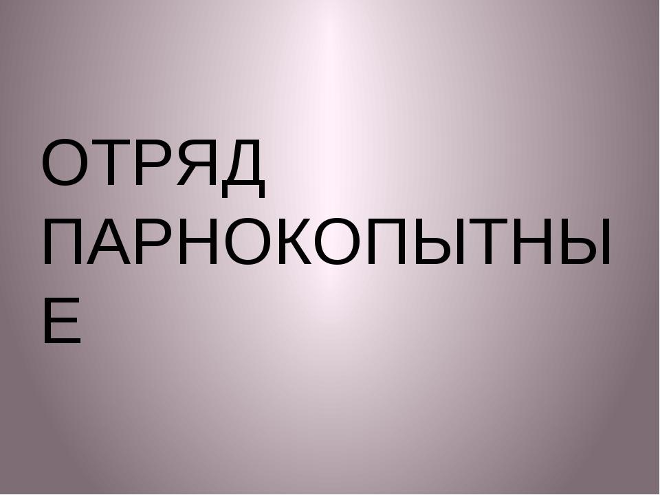 ОТРЯД ПАРНОКОПЫТНЫЕ