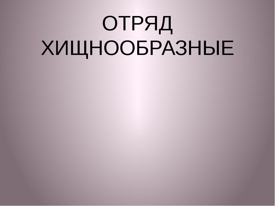 ОТРЯД ХИЩНООБРАЗНЫЕ