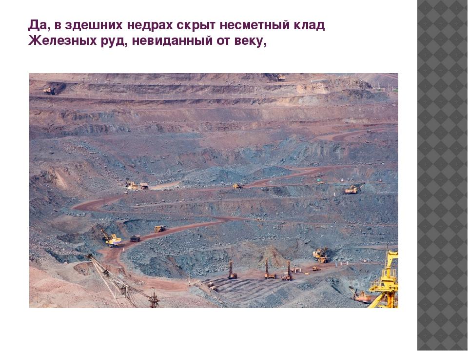 Да, в здешних недрах скрыт несметный клад Железных руд, невиданный от веку,