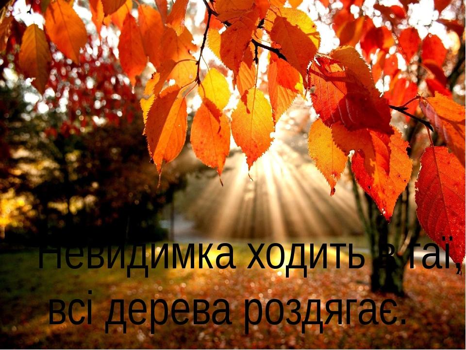 Невидимка ходить в гаї, всі дерева роздягає.
