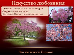 «Ханами» - праздник любования сакурой. Сакура — японская вишня. Она символ Яп